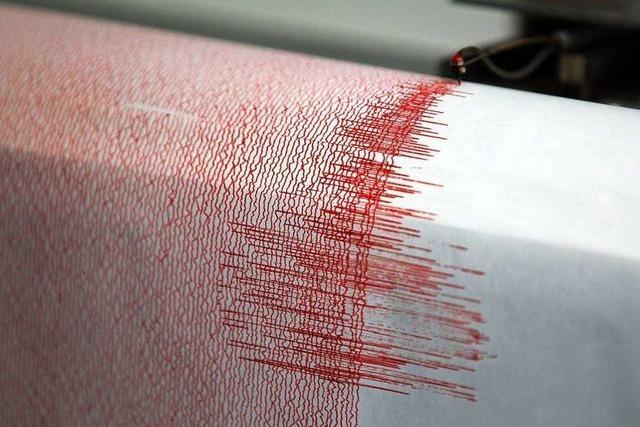 Die Erdbeben im Elsass hatten wohl keine