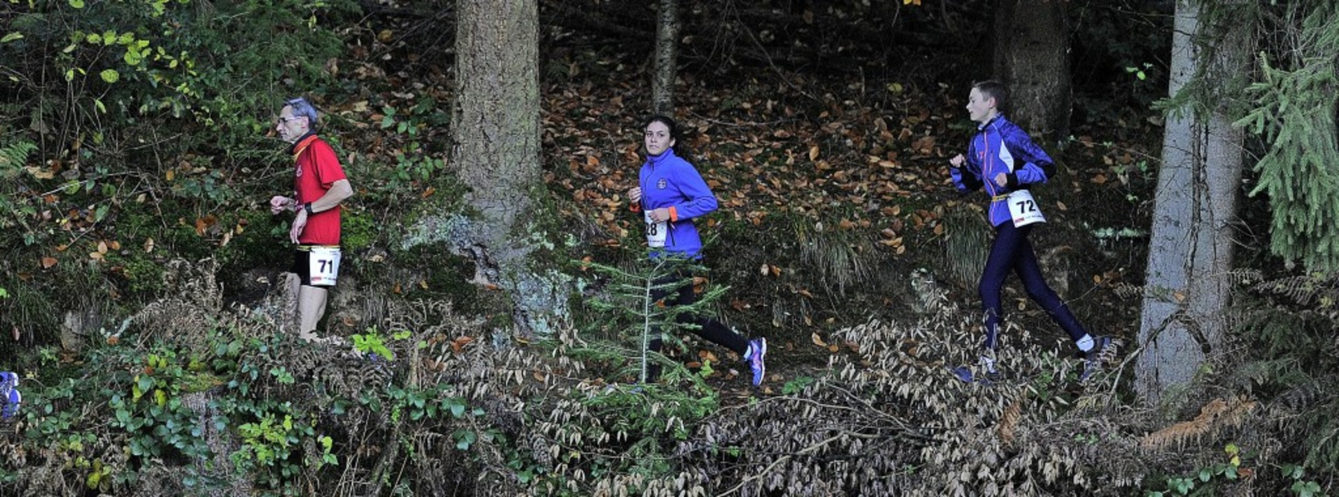 Abwechslungsreich und anspruchsvoll ist die Strecke beim Nikolauslauf.     Foto: Pressebüro Schaller