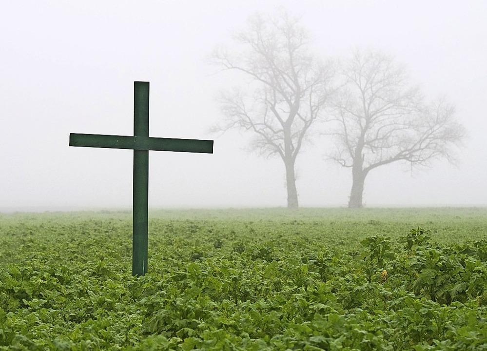 Mit grünen Kreuzen auf Feldern machen ...z von Düngemitteln und Pflanzenschutz.  | Foto: Julian Stratenschulte (dpa)