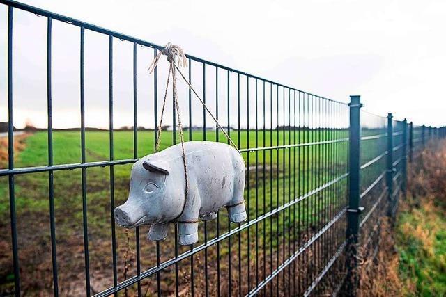 Der Wildschweinzaun trennt nun Dänen und Deutsche