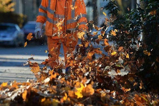 Kommunen suchen Alternativen zu umweltschädlichen Laubbläsern