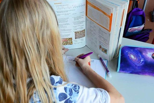 Vigeliusschule kann sechs Jahre nach Start erste Erfolge als Gemeinschaftsschule vorweisen