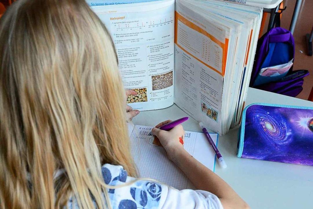 Lernen nach eigenem Tempo in der Vigelius-Gemeinschaftsschule  | Foto: Ingo Schneider