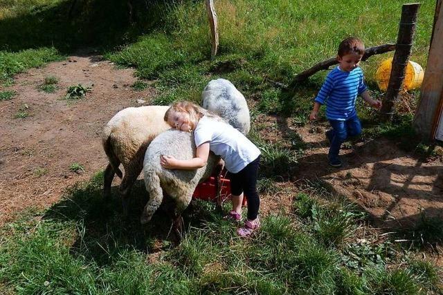 Kindergarten auf dem Bauernhof