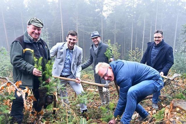 Hexental-Gemeinden pflanzen 5000 Bäume gegen den Klimawandel