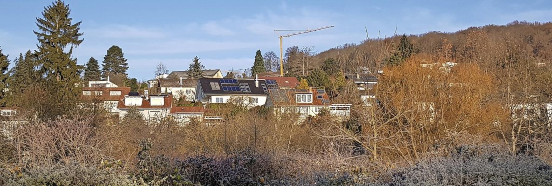 Immer mehr Baukräne ragen auf dem Kast... aus den 1960er Jahren besser steuern.  | Foto: Gerhard Walser