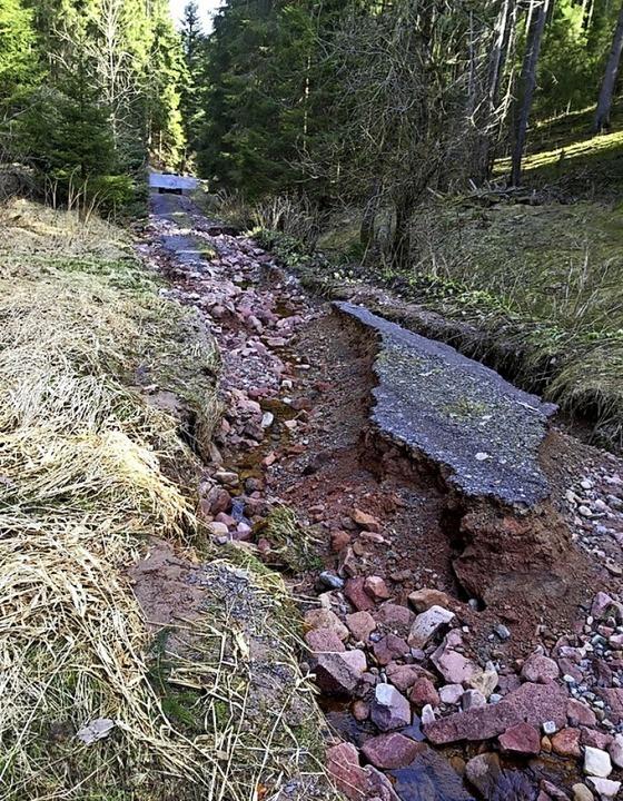 Der schmale Wiedenbach durchpflügte be...eignis im Januar 2018 den Weg daneben.  | Foto: Privat
