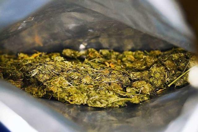 Pilzesammler stößt auf Fass mit reichlich Marihuana