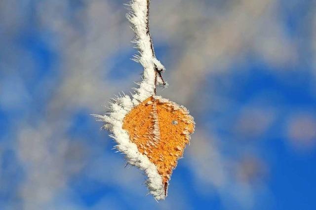 Wenig Sonne, ein paar frostige Tage – so war das Wetter im November