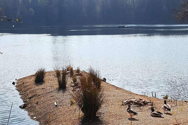 Die künstliche Lunge des Bergsees in Bad Säckingen ist kaputt