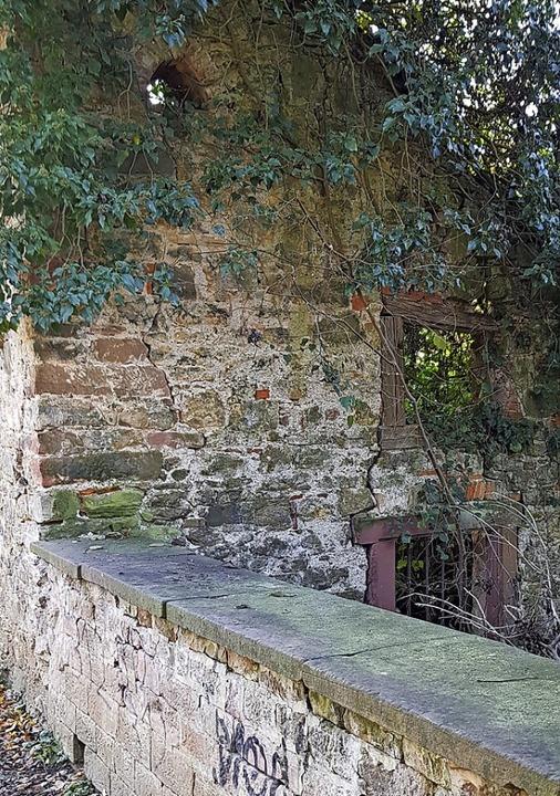Das  alte Badhaus am Mühlbach ist eine Ruine. Es soll saniert werden.  | Foto: Gerhard Walser