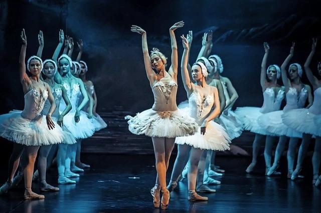 Das russische Nationalballett zeigt Tschaikowskys Schwanensee im Parktheater