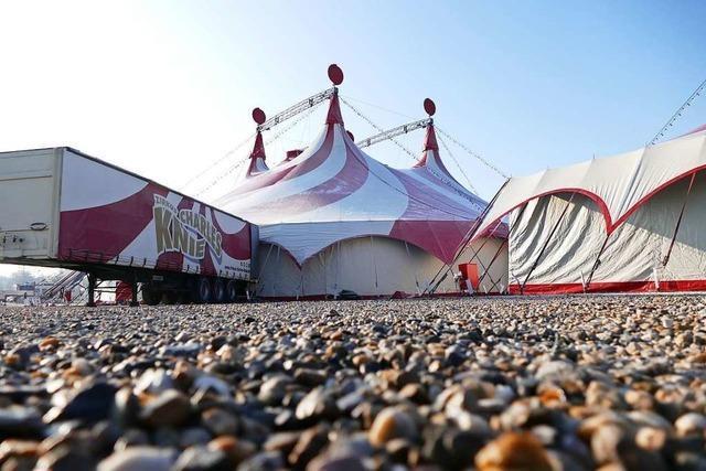 Das Zelt für den Offenburger Weihnachtszirkus steht