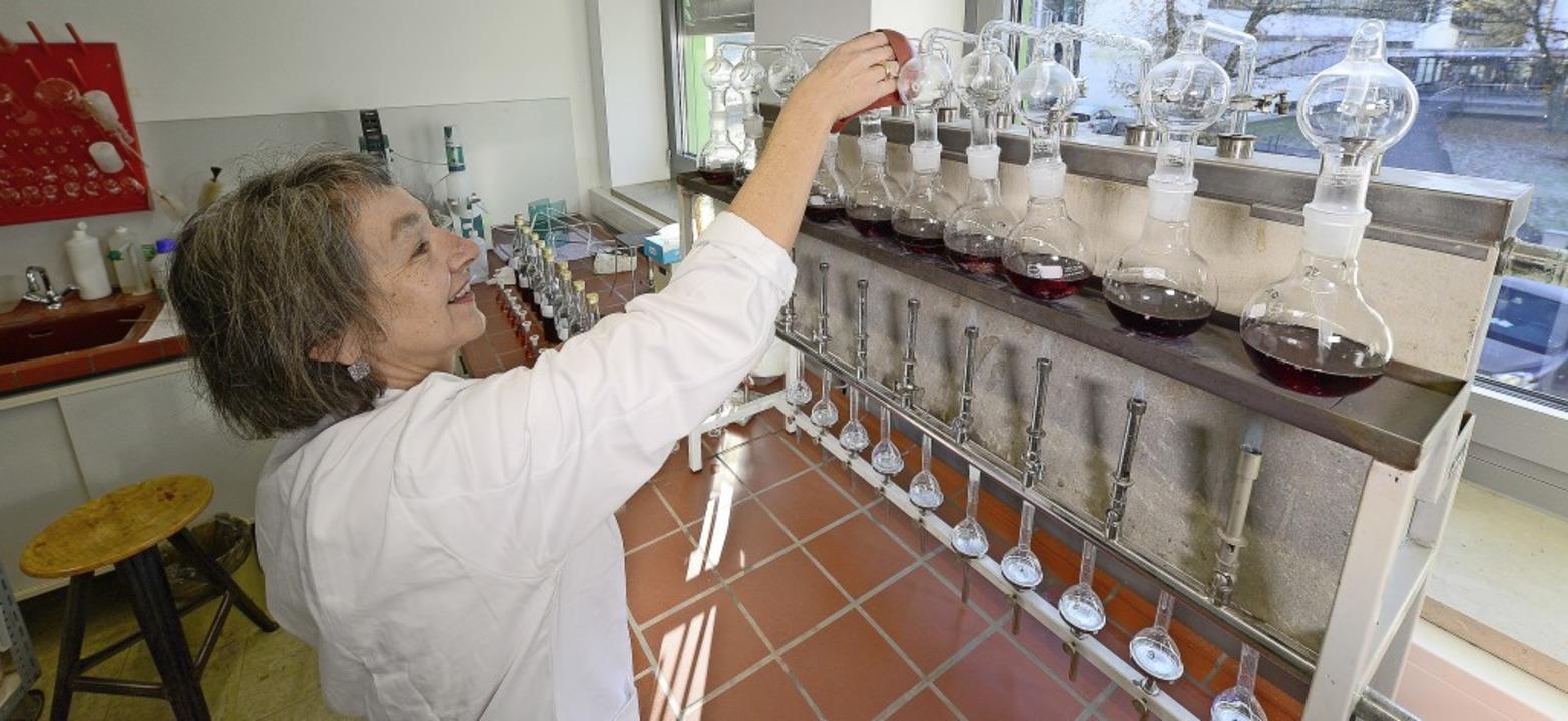 Brigitte Ludewig analysiert die zehn G...bor des Staatlichen Weinbauinstitutes.    Foto: Ingo Schneider