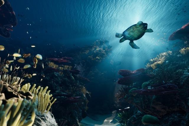 Tauchen wie eine Schildkröte