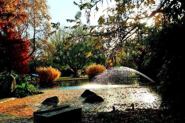 Farbenfroher Herbst im Freiburger Stadtgarten
