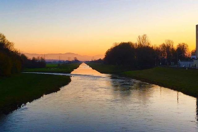 Ein goldenes Band in der Rheinebene bei Riegel