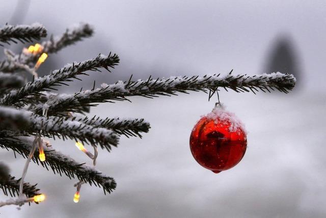 Der Weihnachtsbaum am Schwabentor ist geklaut worden
