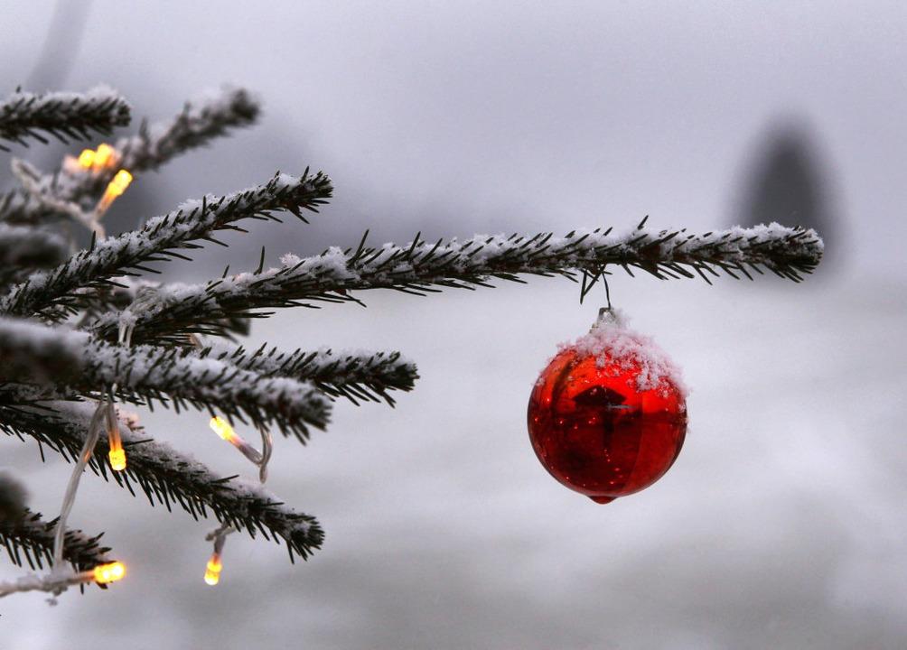 Der Weihnachtsbaum am Schwabentor ist am Freitag gestohlen worden (Symbolbild).  | Foto: Karl-Josef Hildenbrand (dpa)