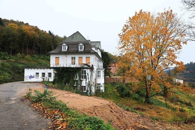 Die Bauphase des umstrittenen Wohnbauprojekts am Altenberg beginnt