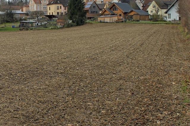 Baupläne für Espen-Süd werden überarbeitet