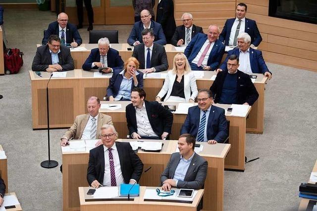 AfD stellt Haushaltsanträge mit völkisch-nationalem Grundton