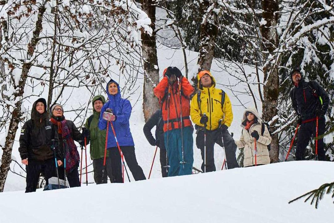 Tierbeobachtung bei einer Schneeschuhtour  | Foto: Ulrike Ott