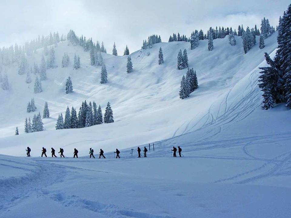 Polonaise im Schnee  | Foto: Oase Alpin Center