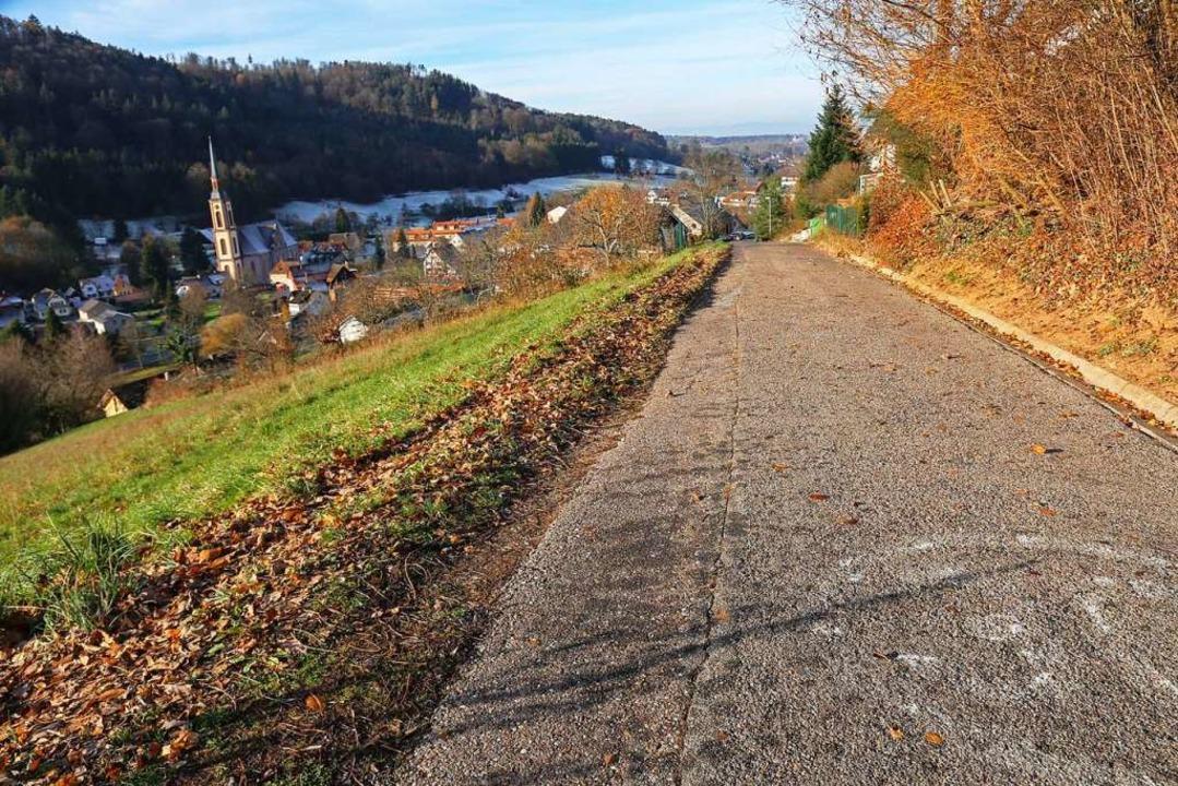 Die Neubergstraße soll nach vielen Jah...hält sich die Begeisterung in Grenzen.  | Foto: Sandra Decoux-Kone