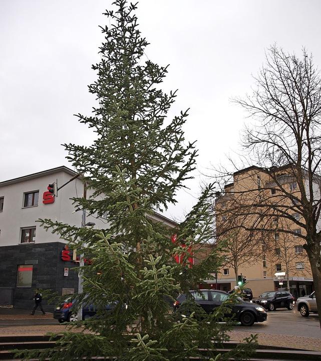 Der von der Stadt gestellte Baum steht...tsteil besser an  als der im Vorjahr.   | Foto: Paul Schleer