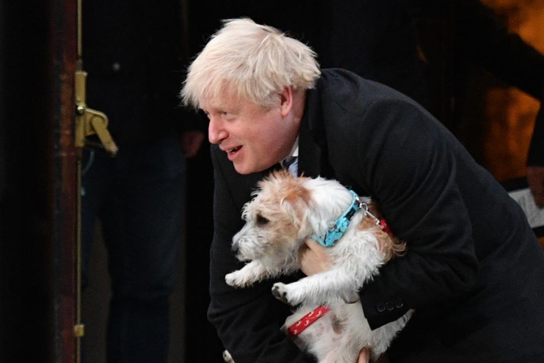 Auch Hund Dilyn ist ein jetzt Star.    Foto: DANIEL LEAL-OLIVAS (AFP)