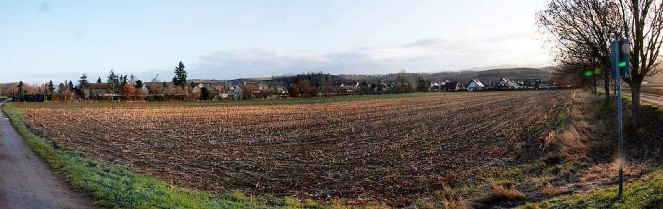 Wo heute noch Ackerfläche im Müllheime... bald ein Wohngebiet errichtet werden.  | Foto: Volker Münch