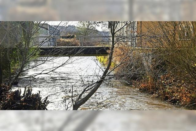 Kritik an Hochwasserschutz-Plänen