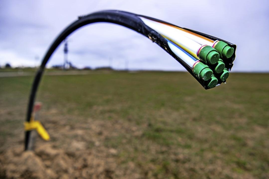 Bis alle Kommunen im Kreis schnelles Internet haben, wird es wohl noch dauern.  | Foto: Sina Schuldt (dpa)