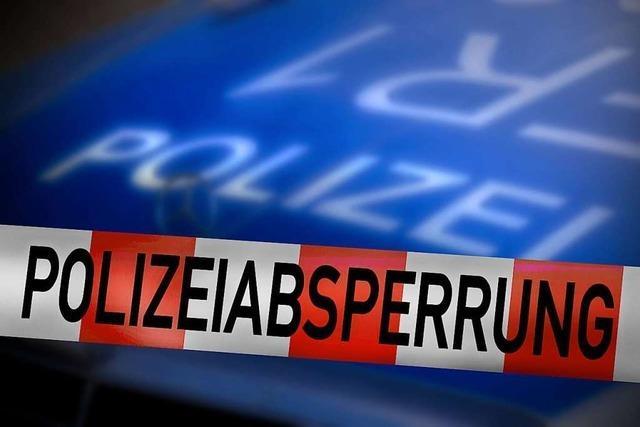 Defekte Klimaanlage sorgt in Breisach für Gasalarm