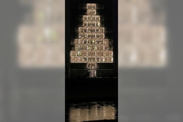 Badens größter Weihnachtsbaum