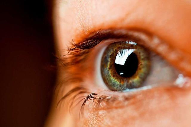 Bei hochsensiblen Menschen schicken die Sinne besonders viele Signale ans Gehirn