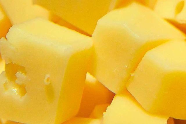 Warum riecht Käse?