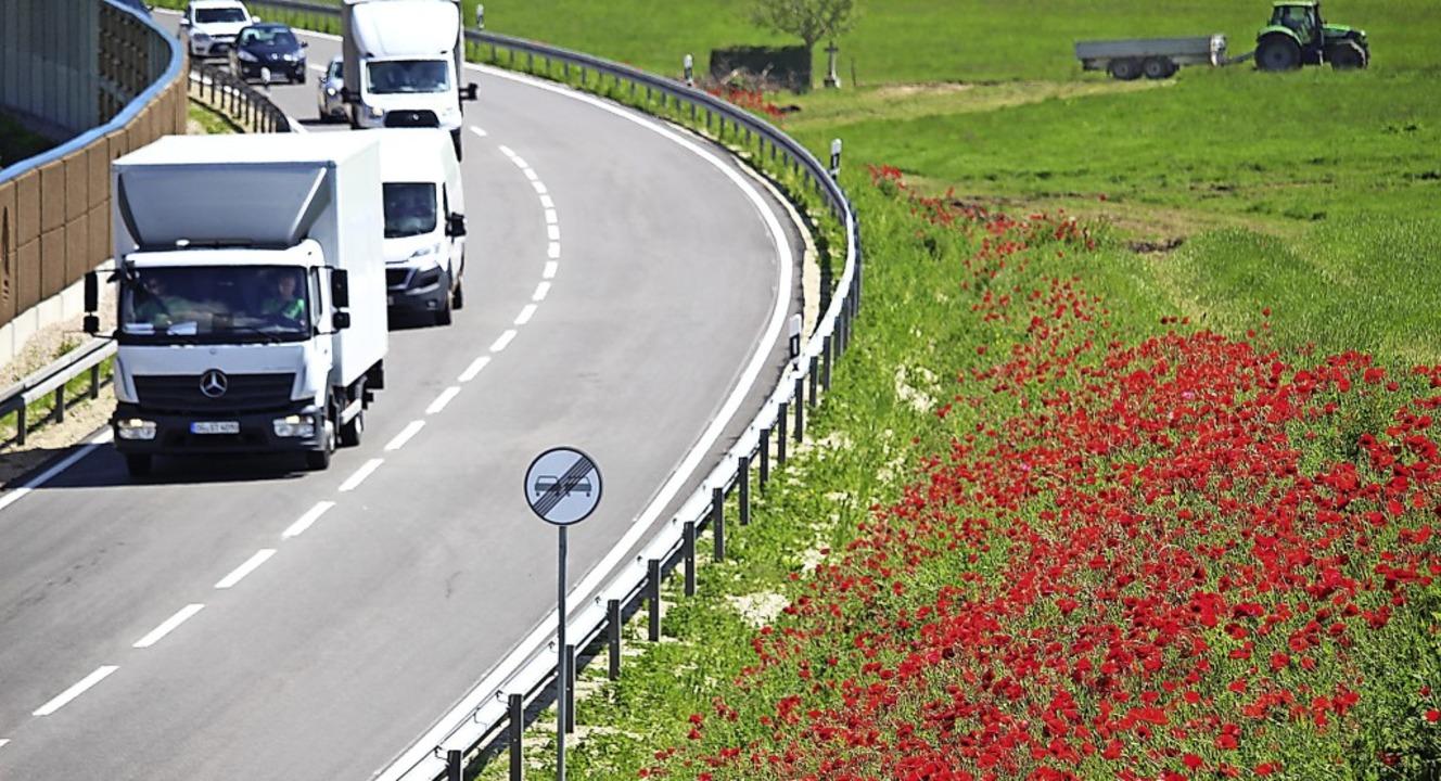 Im Sommer führt die Umfahrung Behla an blühenden roten Mohnblumen  vorbei.   | Foto:  Niederberger, Holger