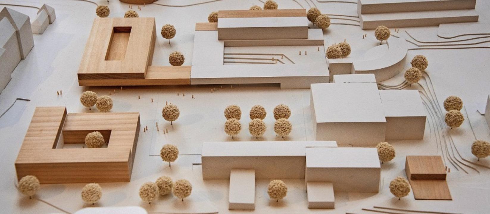 Der Siegerentwurf des Ideenwettbewerbs... im dunkleren Holzfarbton dargestellt.  | Foto: Volker Münch