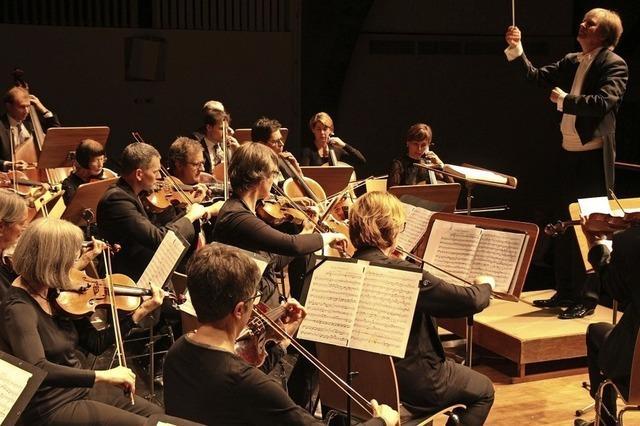 Das Collegium musicum gibt sein traditionelles Weihnachtskonzert in der Erwin-Braun-Halle