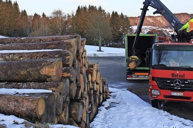 Holz wird nach China verschifft