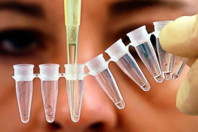 Von acht der elf Angeklagten im Hans-Bunte-Fall gibt es DNA-Spuren