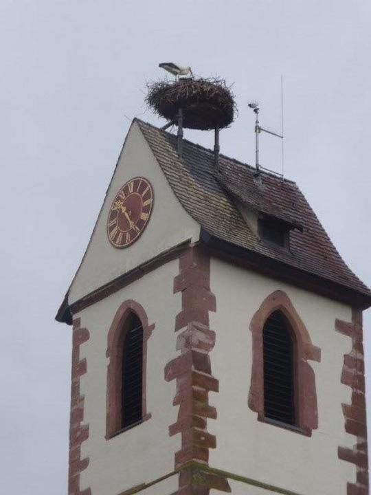 Störche auf dem Gundelfinger Turm im April 2019.  | Foto: Dieter Engelbrecht