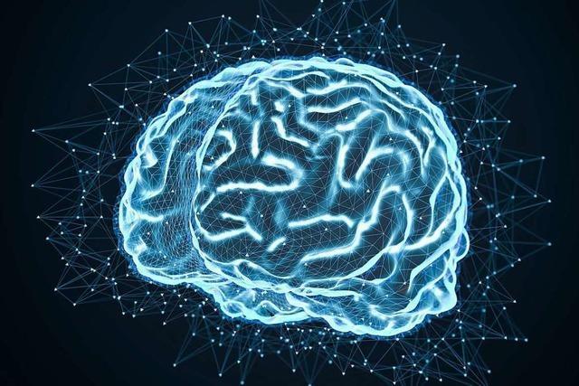 Gehirn ist noch nicht auf digitale Informationsflut eingestellt