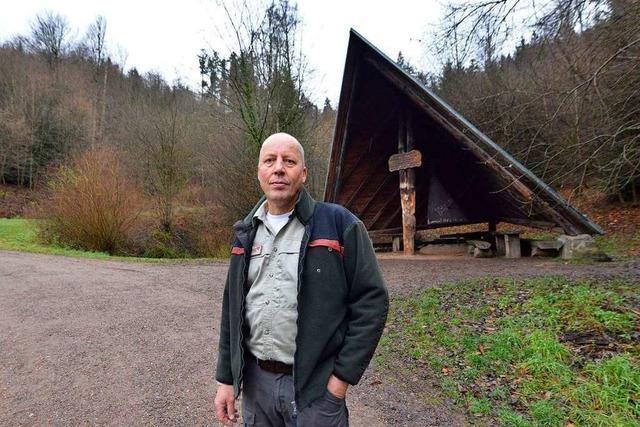Der Freiburger Stadtwald hat sich nach Orkan Lothar verjüngt