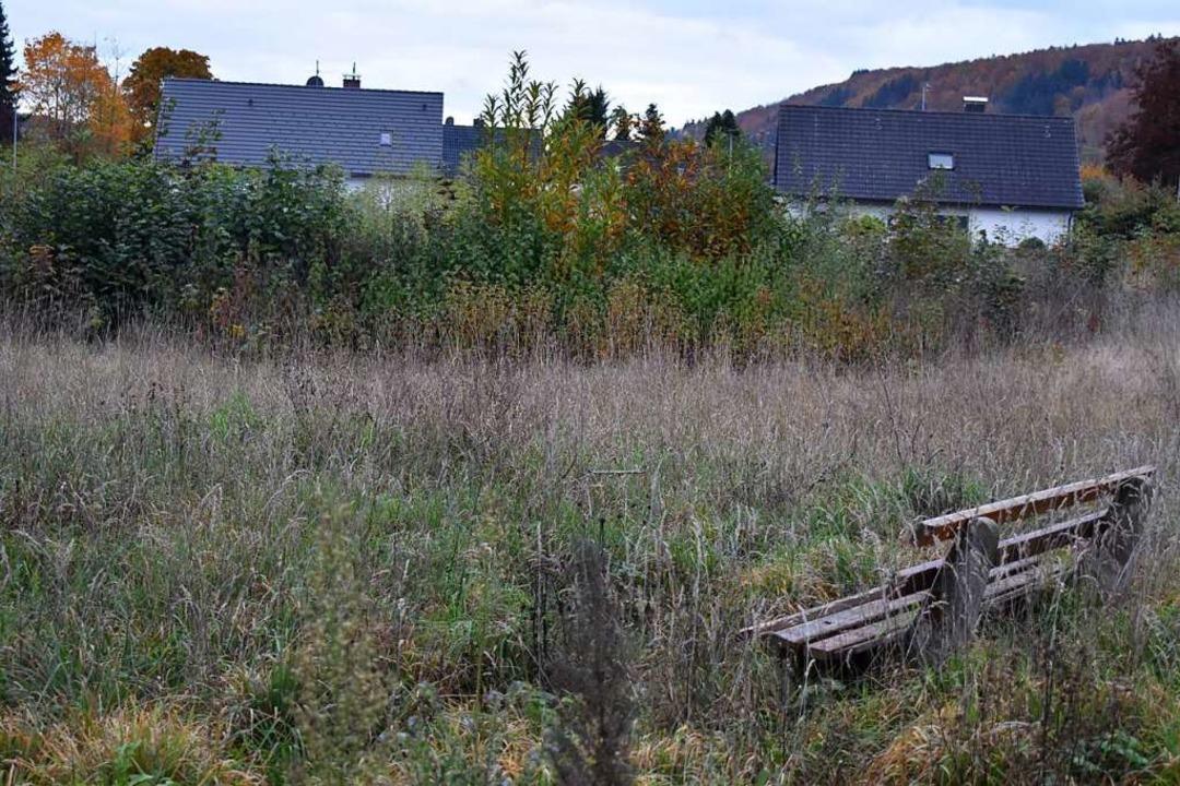 Pflegeheim: Ist der Brennet-Park eine  Alternative?  | Foto: Angelika Schmidt