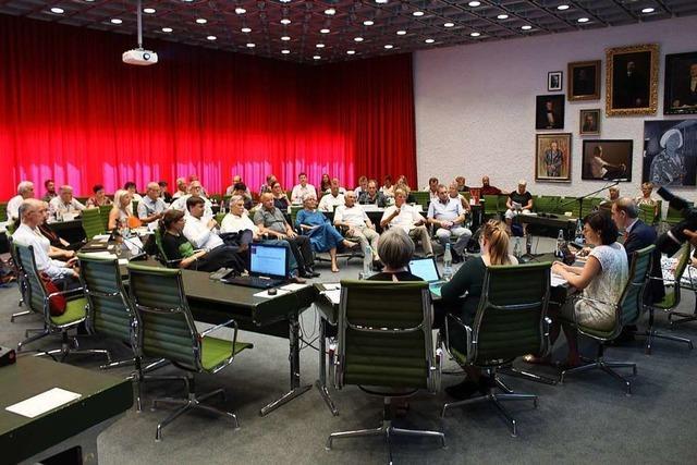 Wie sich der Lörracher Gemeinderat seit der Kommunalwahl verändert hat