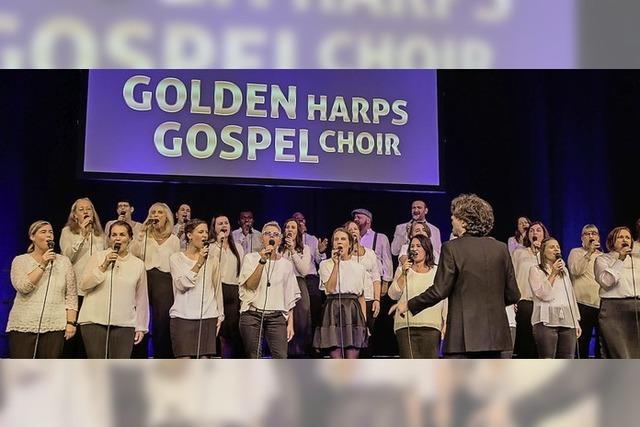 Golden Harps in Rust