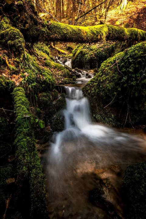 In der Heißbachschlucht  kann man  die...ter Lauf sich tief in die Erde frisst.  | Foto: Birgit-Cathrin Duval